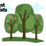 The 5 Best Arborists in Toronto